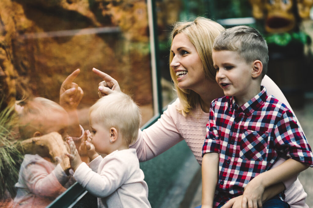 homeschool Mother with her kids looking at reptiles in zoo