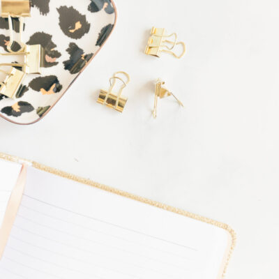 notebook, gold paper clips, leopard print tray